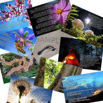Nature.PC.bundle